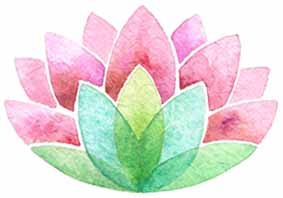 lotus-fleur-illustration-aude-villerouge.jpg