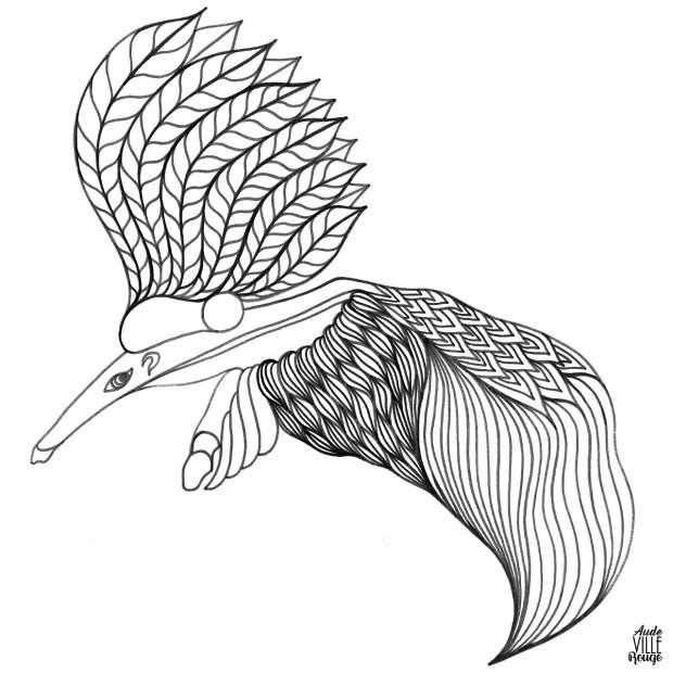 coloriage-tamara-la-tamanoir-illustration-aude-villerouge